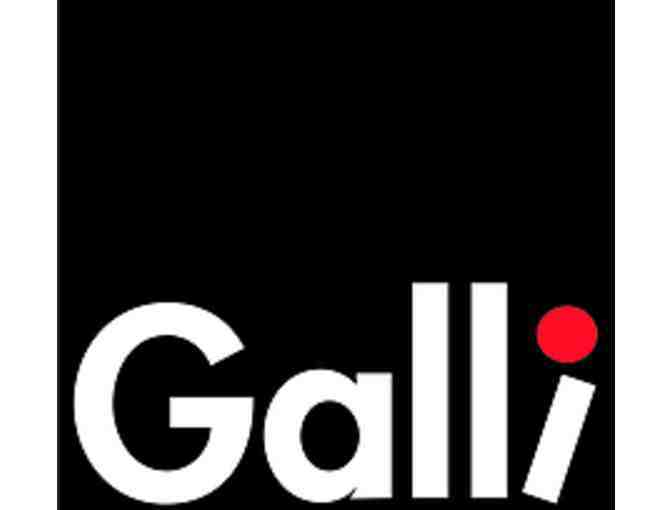 4 Family tickets for one performance at Galli Theater New York