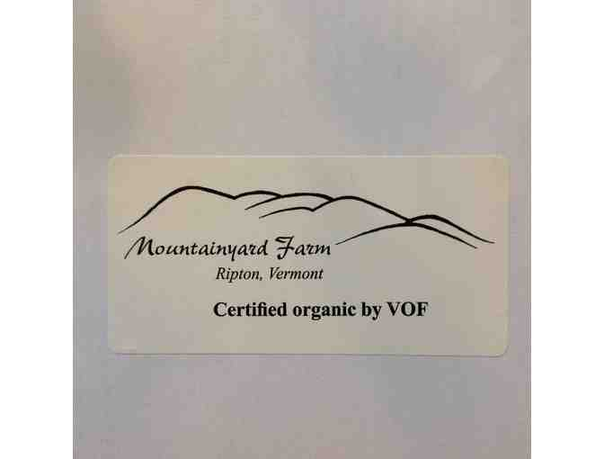 Organic Starts from Mountainyard Farm