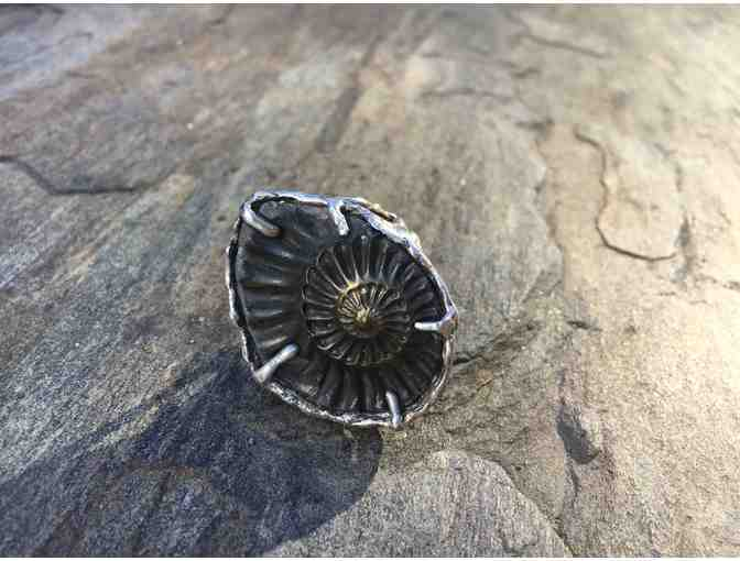 Fossil Ammonite Ring