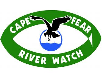 Lower Cape Fear River Basin Tour, 5 hours - 5 rivers