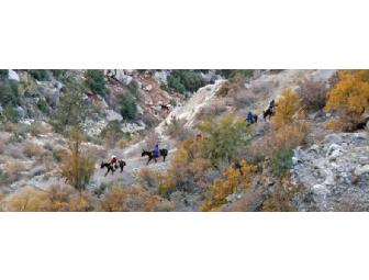 'Historic El Tovar' Two Night Stay and Mule Ride Adventure for Two