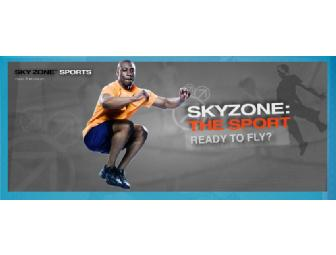 SkyZone Sports ~Rocklin, CA