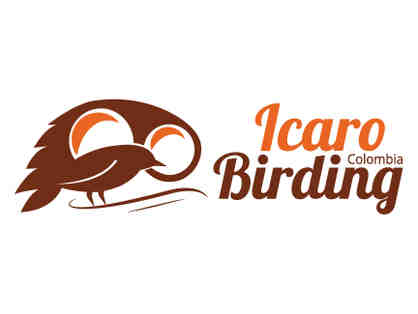 $500 certificate for tour with Icaro Birding in Colombia