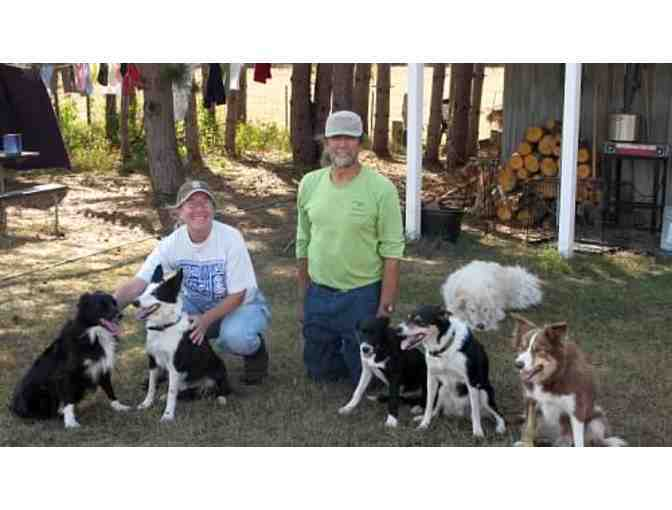 A Day on the Fleece Farm for Up to Four People in Oxford Township, MN
