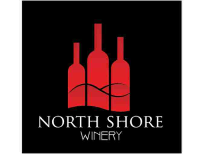 Wine Tasting 101 with Winemaker for Four from North Shore Winery
