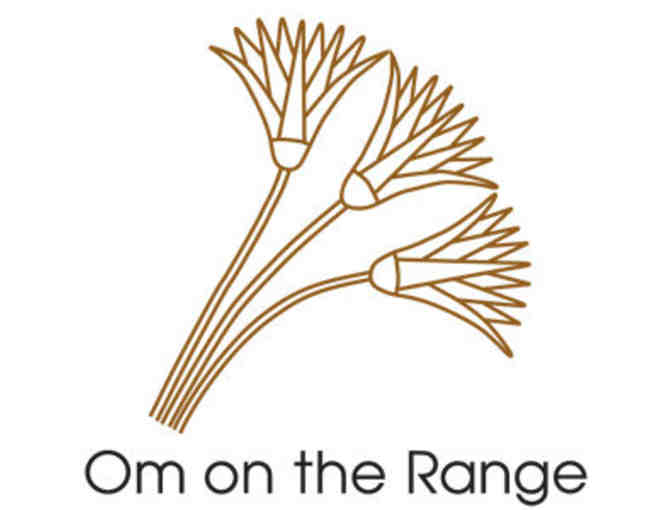 5 Class Package from Om on the Range Yoga Studio