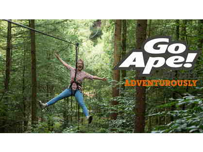 2 adult passes to the treetop adventure course at Go Ape