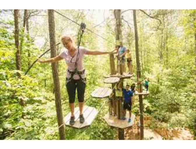 2 adult passes to the treetop adventure course at Go Ape - Photo 1