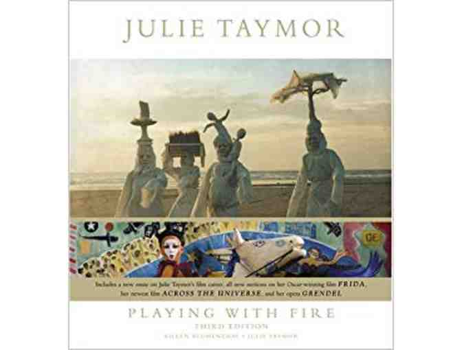 Julie Taymor Playing With Fire Updated and Expanded Edition
