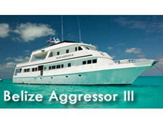 Choose Your Dive Adventure aboard the Aggressor Fleet