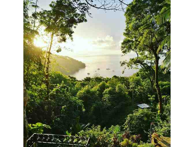 5 Nights in Manuel Antonio, Costa Rica