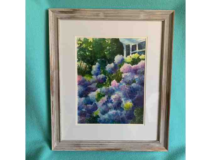 'Cape Hydrangeas' Watercolor