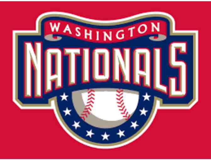 Day at the Park with the Washington Nationals
