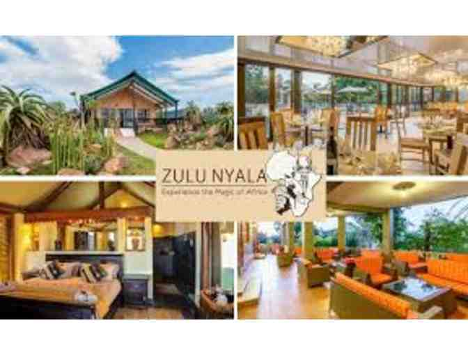 Zulu Nyala South Africa Photo Safari - Six Days and Six Nights for Two People!