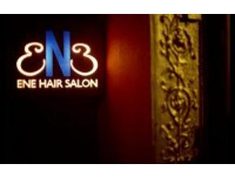 ENE Salon - Haircut and Conditioning Treatment