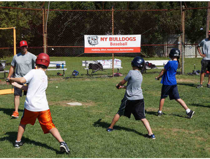 Bulldog Ball Club - One free week of Multi-Sports camp in East Hampton - Photo 3