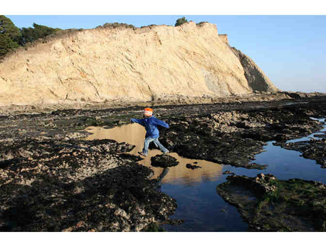 Explore Tide Pools with Dr. Ben Becker and an Overnight Stay at the Chief's House for 8!