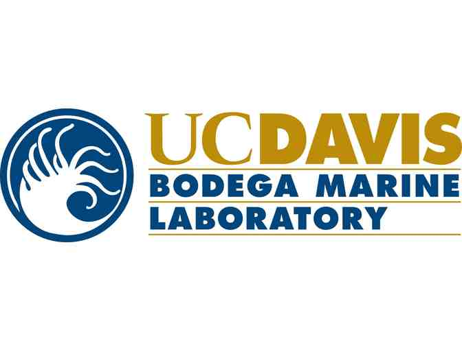 Tour Bodega Marine Laboratory with Dr. Kristin Aquilino and Stay at Bodega Bay Lodge