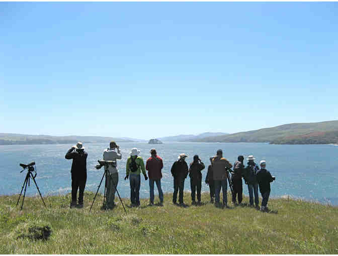 Birding Point Reyes with John Dell'Osso and 2 Weeknights at the Historic Lifeboat Station
