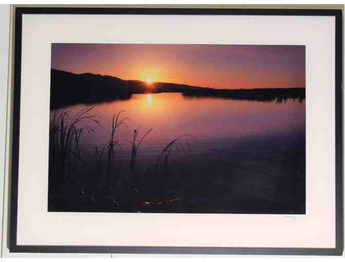 framed art photo (37.5' x 28.15') 'Spring Sunrise and Cattails, Flooded Marsh, Limant