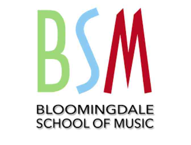 30 Minute Music Lesson @ Bloomingdale School of Music