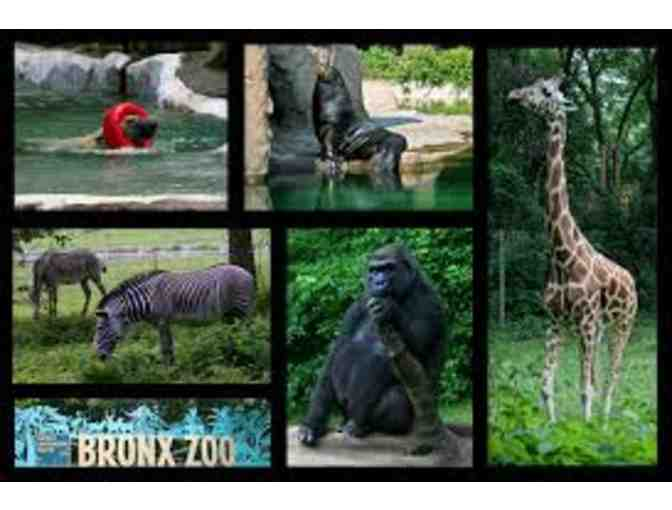 2 tickets to The Bronx Zoo