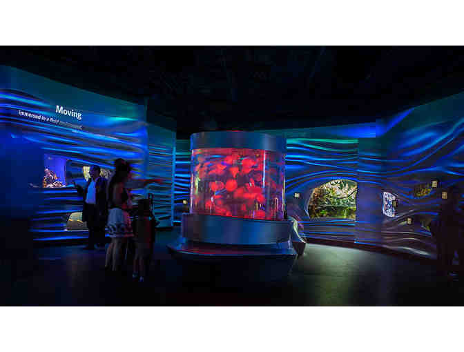 Four Admission Tickets to the California Academy of Sciences