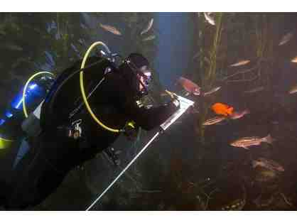 Reef Check California Training and Certification