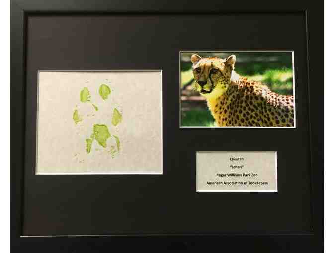 Cheetah Original Artwork - Photo 2