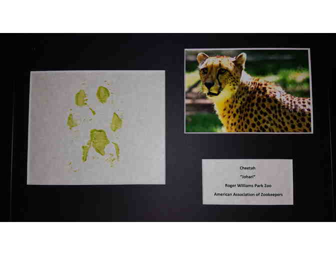 Cheetah Original Artwork - Photo 1