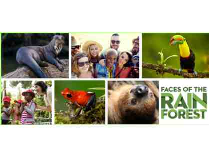 A Behind the Scenes VIP Tour of the all new Faces of the Rainforest Exhibit