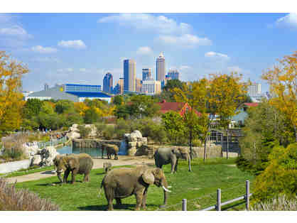 A Family 4-Pack of Tickets to the Denver Zoo