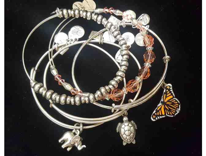 EXCLUSIVE Alex & Ani Bracelet Set #1 - Photo 1