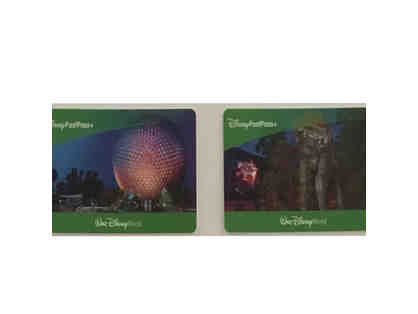 Disney Park Hopper Passes