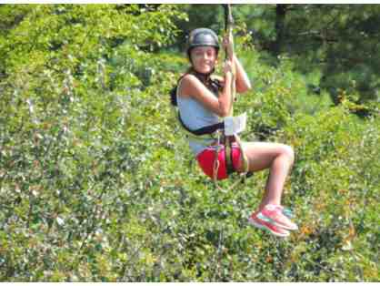 Zip Line Tour with Take Flight Aerial Adventure Course