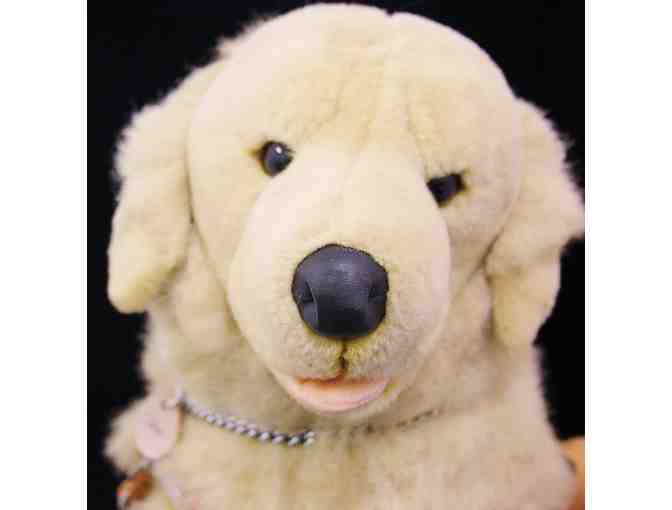 Chase the Golden Retriever Plush in Harness