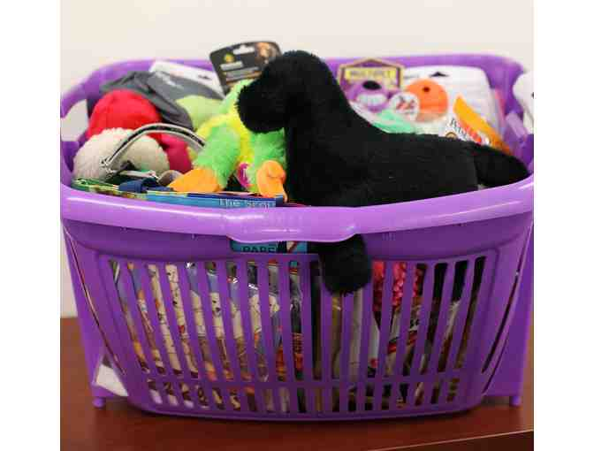 Play and Chew Gift Basket- 50 toys!