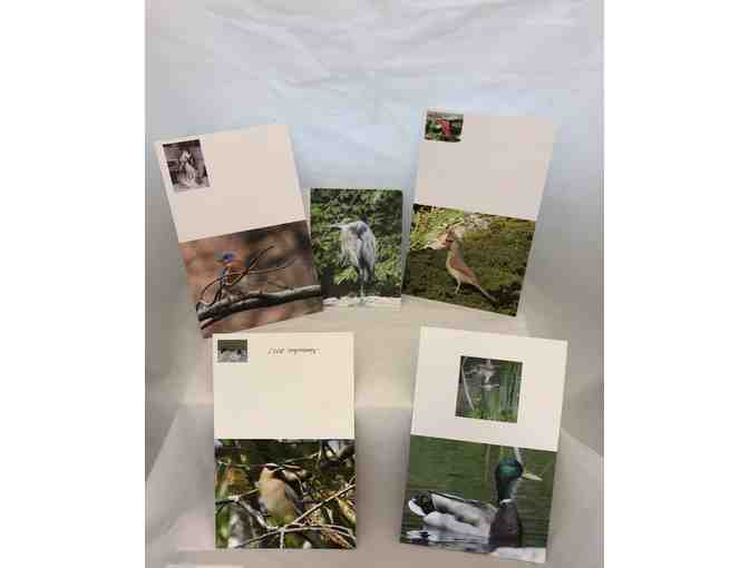 Set of 5 Note Cards For the Bird Enthusiast