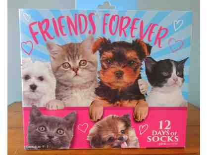 Friends Forever - 12 Days of socks (Puppies and Kitties)