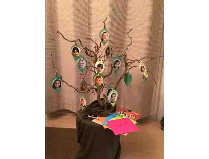 Classroom Treasure - A Tree for All Seasons - Mrs. S. Smith