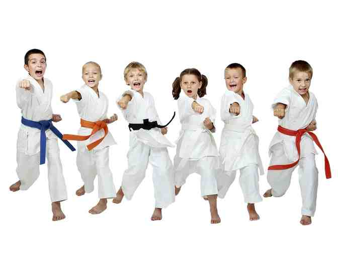 1 Kick Up Martial Arts CONCORD - 1 month membership $110