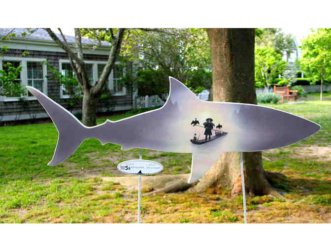 Cape Cod 5 Savings Bank's Shark in the Park - Photo 1