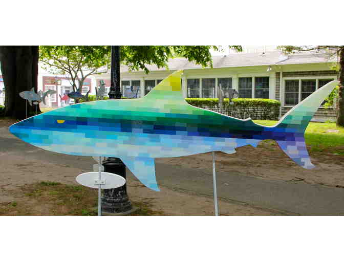 Siemasko + Verbridge 's Shark in the Park - Photo 1