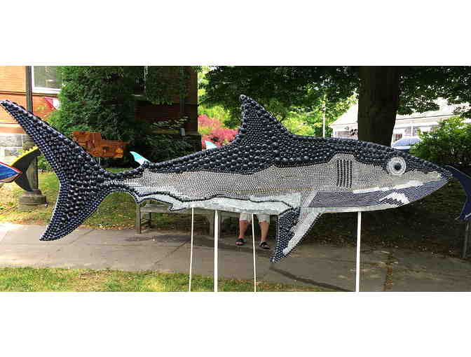 Chatham T Kids's Shark in the Park - Photo 1