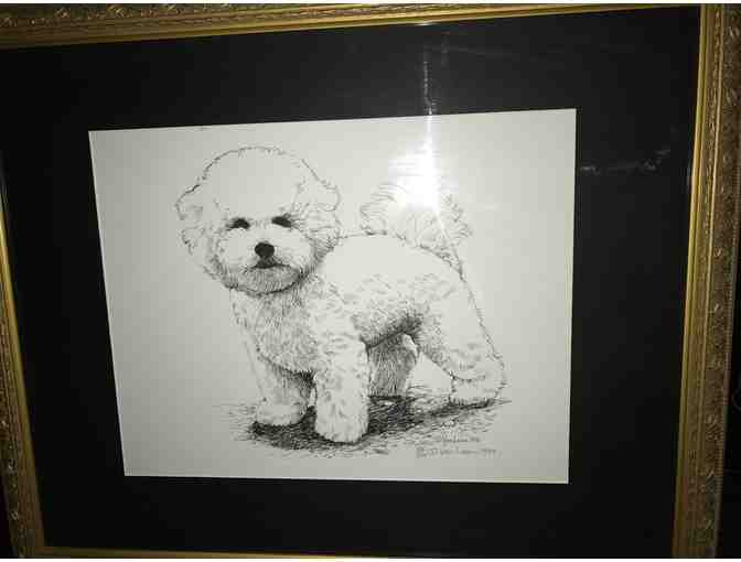 Bichon Frise 'Puppy Standing' Limited Edition Print by Martha Van Loan