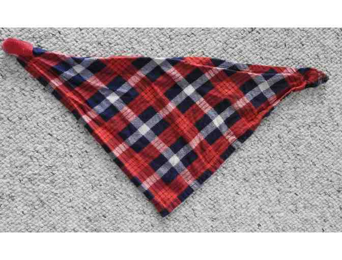 Doggie scarf - Red, white and blue plaid