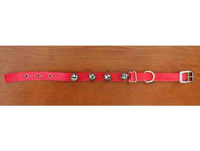 Premier large jingle bell collar