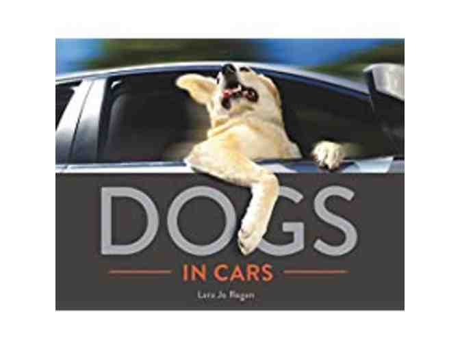 Dogs in Cars by Lara Jo Regan