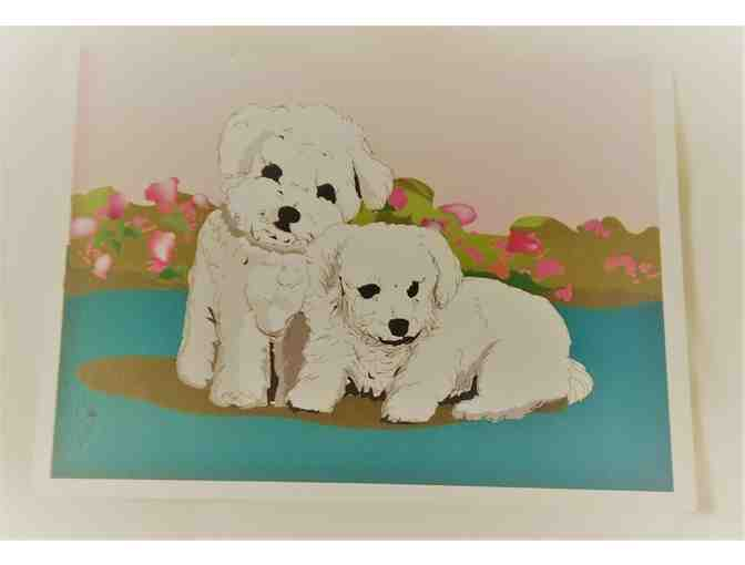 Bichon notecards