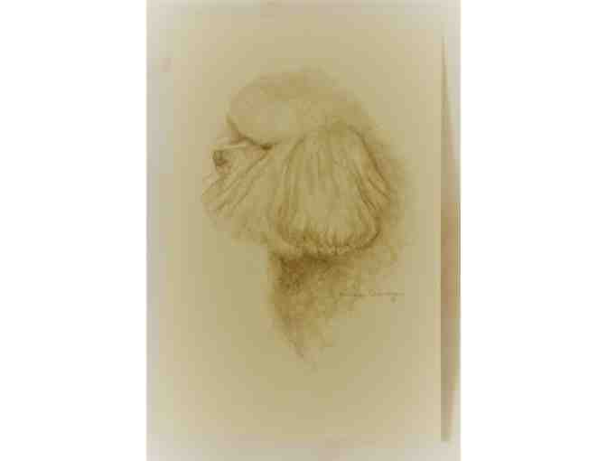 Bichon note cards